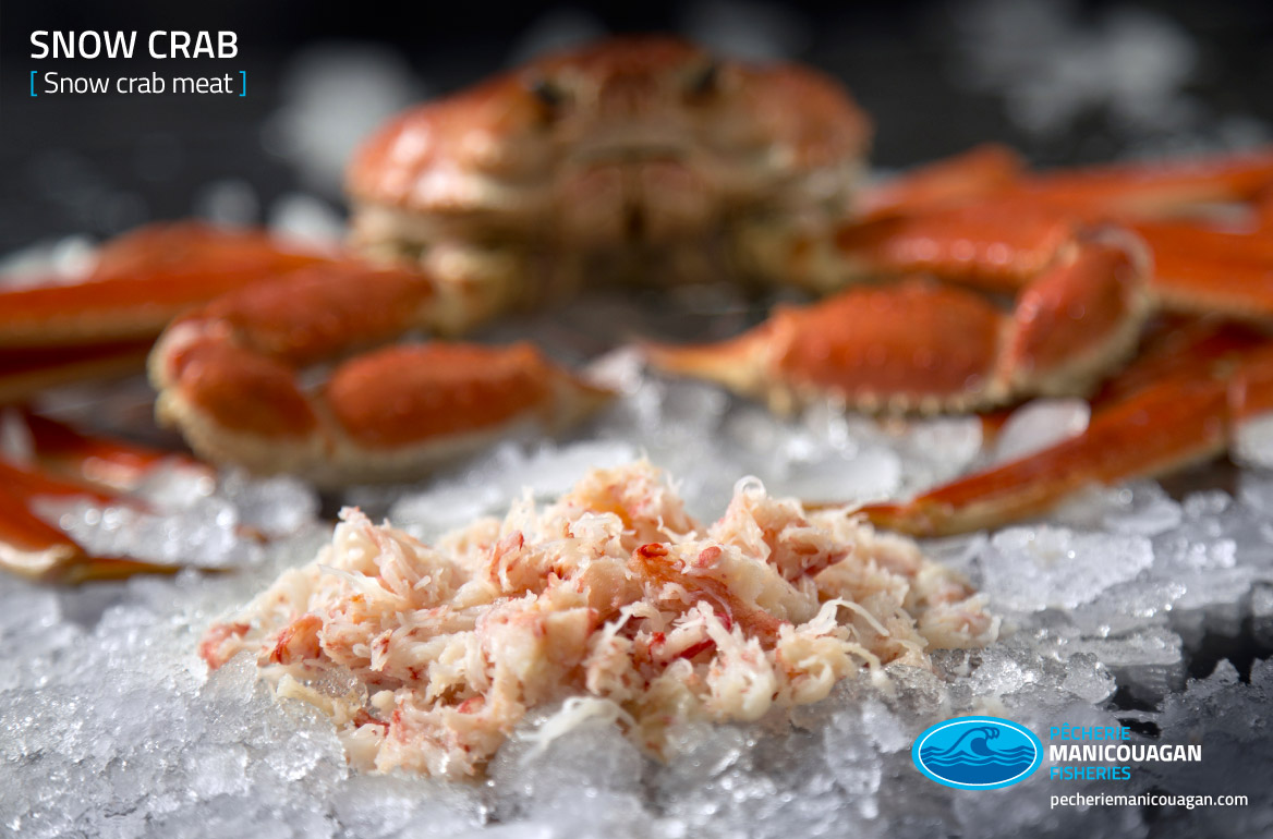Distributor of snow crab, a product of Québec - Pêcherie